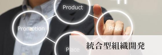 イメージ:統合型組織開発